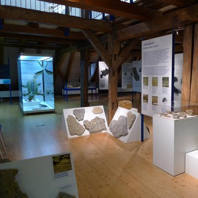 Muschelkalk Room